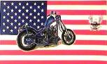 USA BIKE HD FLAG 3'X5'