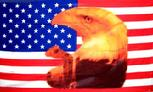 eaglewithtears USA flag