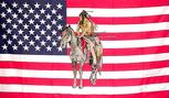 USA INDIAN PONY FLAG 3' X 5'