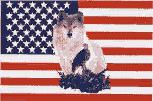 US Flag background with a Wolf and Eagle. 3' X 5' with reinforced edge