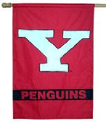 Youngstown State U banner flag
